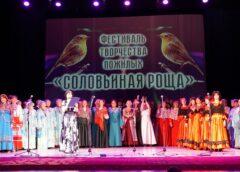 В ДК «Салют» прошел юбилейный фестиваль творчества пожилых людей